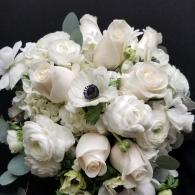 Hand-Tied bouquet of roses, anemones, ranunculus and hydrangea all in white. Accented with Silver Dollar Eucalyptus